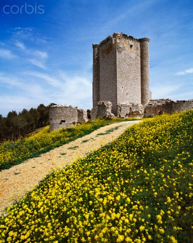 Iscar Castle, near Valladolid