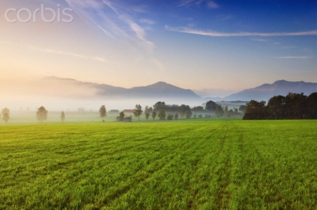 Countryside near the Alps in mist